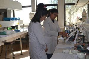 Pasantía estudiantes de tercero medio científico